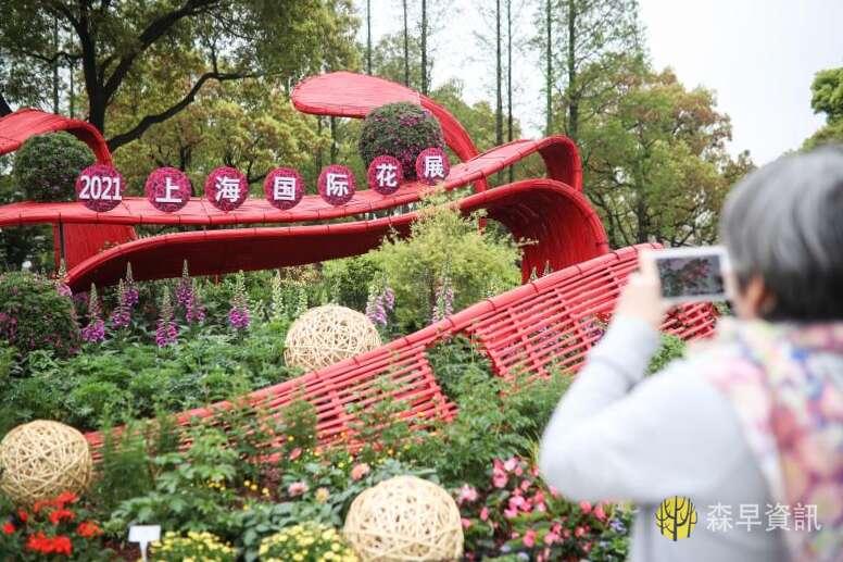 """上海国际花展第三次采用""""双女主"""",两千多年前它就是定情信物"""